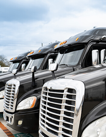 fleet-domestic and import services
